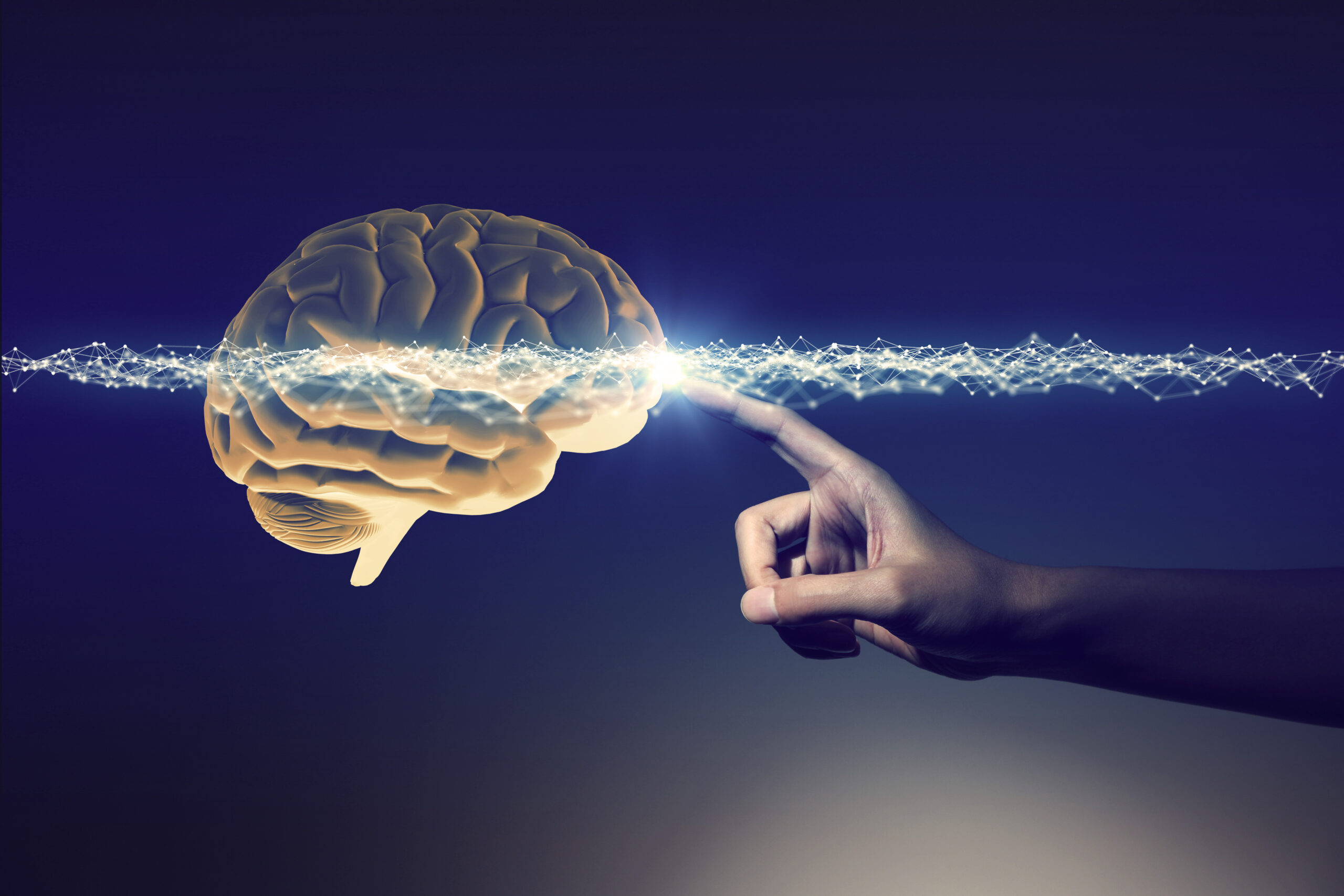 Human,Hand,And,Brain,,3d,Rendering